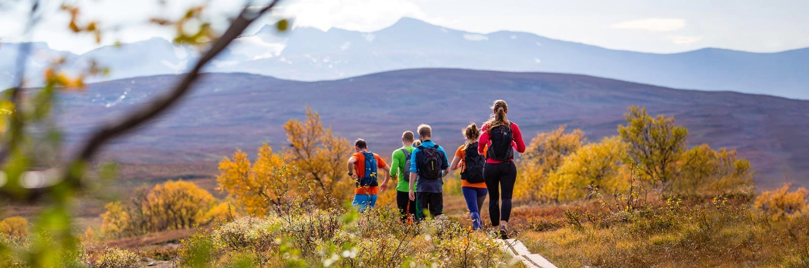 People running on autumn coloured Jämtlandstriangeln