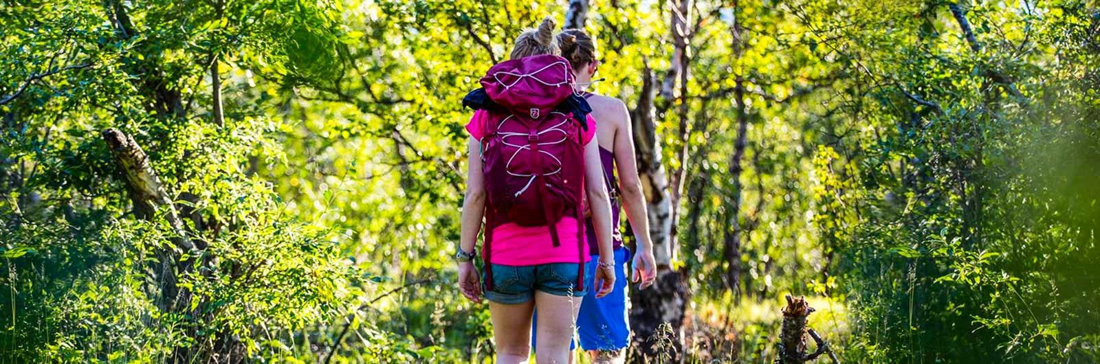 Hiking on the route Grövelsjön – Svukuriset – Grövelsjön