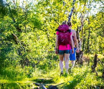 Couple hiking in birch woods
