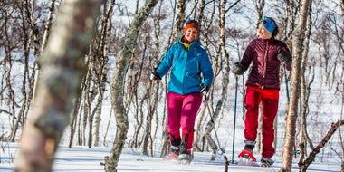 Snowshoes in abisko